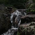 Water Fall Stilled by Lynn Michelle