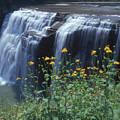 Water Falls by Raju Alagawadi