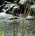 Water Flowing 2 by LDS Dya