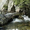Water Flowing 5 by LDS Dya