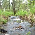 Water Flows After A May Rain by Kent Lorentzen