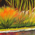 Water Garden Landscape 5 by Melody Cleary