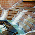 Water Gardens Abstract by Joan Carroll