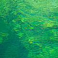 Water Green by Britt Runyon