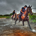 Water Horses by Rob Hawkins