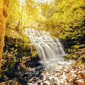 Water In Fall by Jorgo Photography - Wall Art Gallery