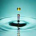Water Landing by Ryan Heffron