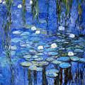 water lilies a la Monet by Joachim G Pinkawa