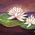 Water Lilies by Patricia Piffath