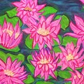 Water Lillies by Katina Cote
