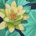 Water Lily by Jim Bob Swafford