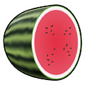 Water Melon Outlined by Miroslav Nemecek