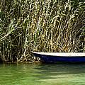 Water Scene Pano by Svetlana Sewell