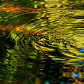 Water Swirl by Susanne Van Hulst
