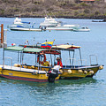Water Taxis Waiting by Sally Weigand