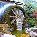 Water Wheel In Spring by Peg Donnellan
