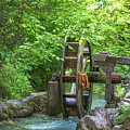 Water Wheel In The Woods by Amy Sorvillo