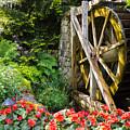 Water Wheel by John Johnson