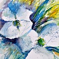 Watercolor 017070 by Pol Ledent