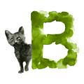 Watercolor alphabet B Cat art print painting by Joanna Szmerdt