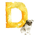 Watercolor alphabet D dog art by Joanna Szmerdt