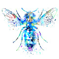 Watercolor Bee by Zuzi 's