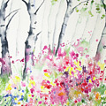 Watercolor - Birch And Wildflowers by Cascade Colors