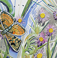 Watercolor - Checkerspot Butterfly With Wildflowers by Cascade Colors