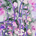 Watercolor - Cherry Blossoms by Cascade Colors