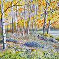 Watercolor - Colorado Autumn Forest And Landscape by Cascade Colors