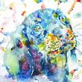 Watercolor Dachshund by Fabrizio Cassetta