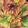 Watercolor Dahlia by Angela Armano