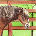 Watercolor Horse Pet Portrait  by Irina Sztukowski