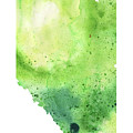 Watercolor Map Of Alberta, Canada In Green  by Andrea Hill