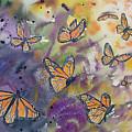 Watercolor- Monarchs In Flight by Cascade Colors