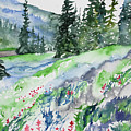 Watercolor - Mountain Pines And Indian Paintbrush by Cascade Colors