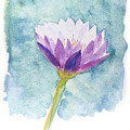 Watercolor Of Lotus Flower. by Noppanun Kunjai