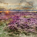 Watercolor Painting Of Beautiful Dawn Sunrise Landscape Image Of Heather On Higger Tor In Summer In  by Matthew Gibson