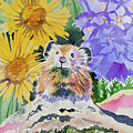 Watercolor - Pika With Wildflowers by Cascade Colors
