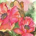 Watercolor Poppies by Lila Van Pelt