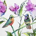 Watercolor - Purple-throated Mountain Gems And Flowers by Cascade Colors