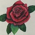 Watercolor Rose by Renae Shore