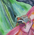 Watercolor - Small Tree Frog On A Colorful Flower by Cascade Colors
