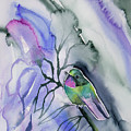 Watercolor - Tourmaline Sunangel Portrait by Cascade Colors