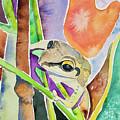 Watercolor - Tree Frog At Maquipucuna Ecuador by Cascade Colors