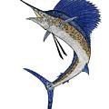 Watercolor Tribal Sailfish by Carol Lynne