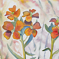 Watercolor - Wallflower Wildflowers by Cascade Colors