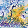 Watercolor - Winter Woodland Sunrise by Cascade Colors