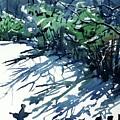 Watercolor4597 by Ugljesa Janjic