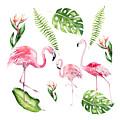 Watercolour Flamingo Family by Georgeta Blanaru